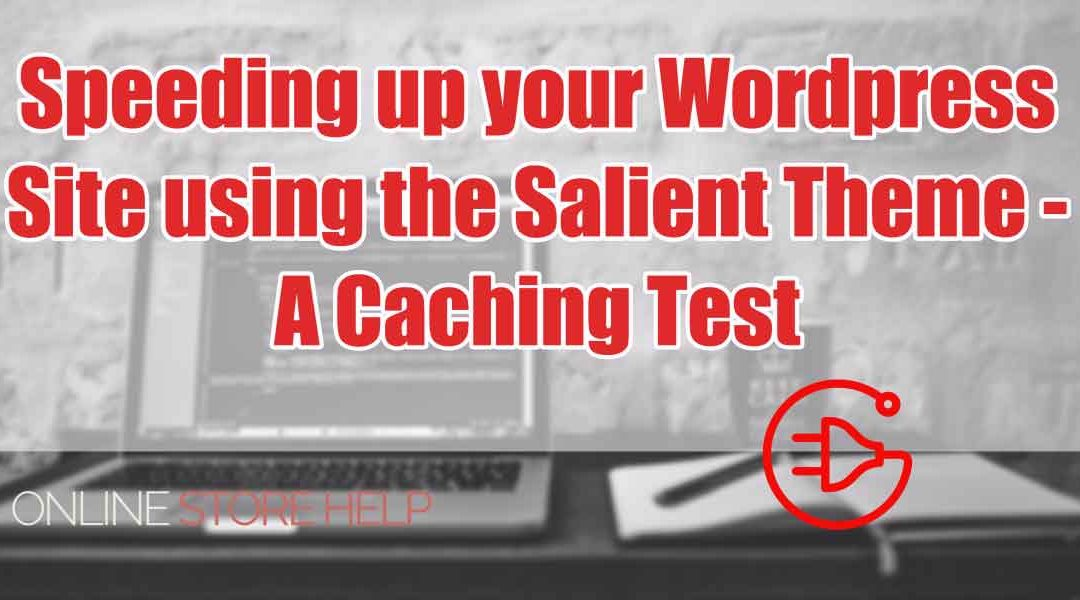 Speeding up your website using the Salient Theme