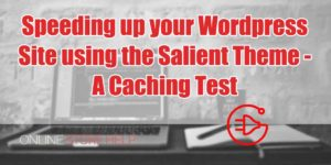 salient-theme-caching-test1